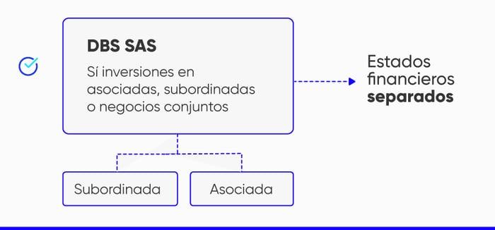 Clases-de-estados-financieros-separados
